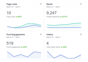 Facebook Insights - Examples