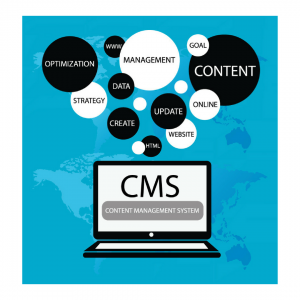 CMS is Best for Your Business